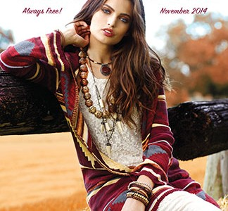 WE cover Nov 2014-2